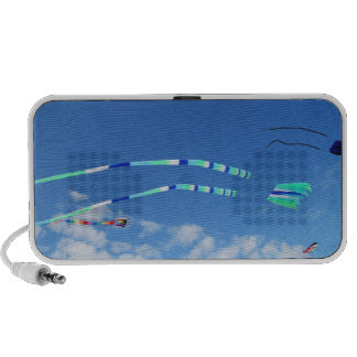 Blue Green Long Tail Kite iPod Speakers