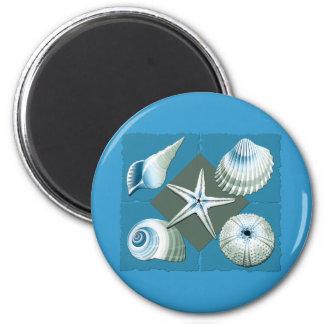 Blue & Green Sea Shells 2 Inch Round Magnet