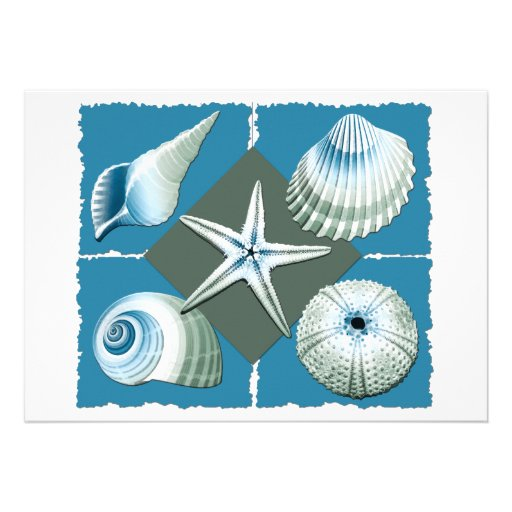 Blue & Green Sea Shells Custom Announcements