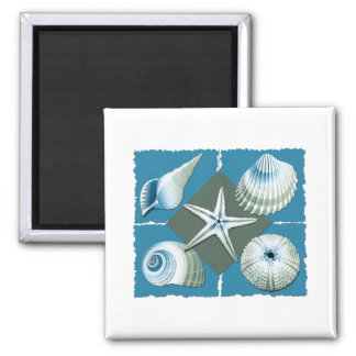 Blue & Green Sea Shells 2 Inch Square Magnet