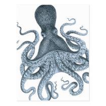 Blue Grey Vintage Octopus Illustration Postcard
