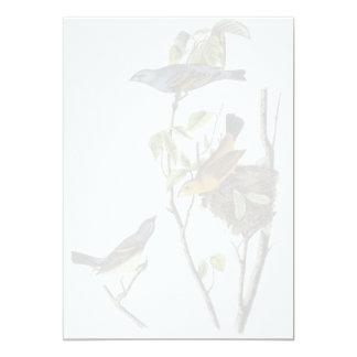 Blue Grosbeak John James Audubon Card