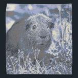 """blue guinea pig bandana<br><div class=""""desc"""">Adorable Guinea pig</div>"""