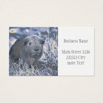 blue guinea pig business card