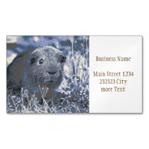 blue guinea pig business card magnet