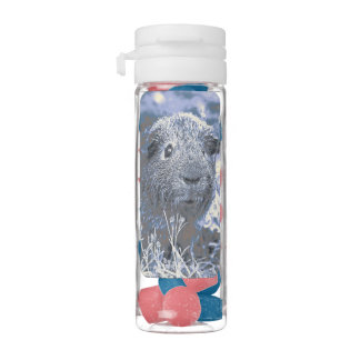 blue guinea pig chewing gum favors
