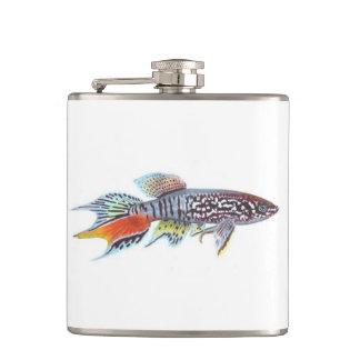 Blue Gularis Killifish Small Flask