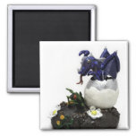 Blue hatching dragon 2 inch square magnet