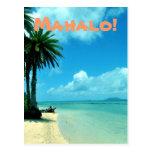 Blue Hawaii Beach Postcard