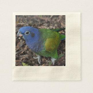 Blue Headed Amazon Parrot on ground Disposable Napkin