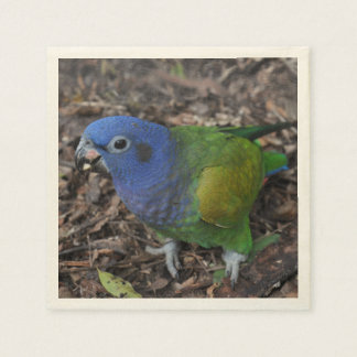 Blue Headed Amazon Parrot on ground Paper Napkin