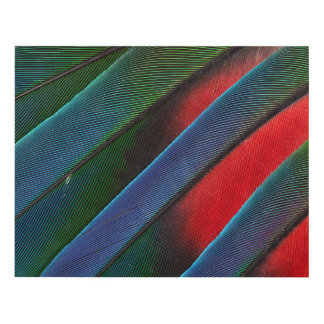 Blue Headed Parrot Feather Design Panel Wall Art