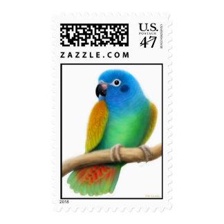 Blue Headed Pionus Parrot Postage
