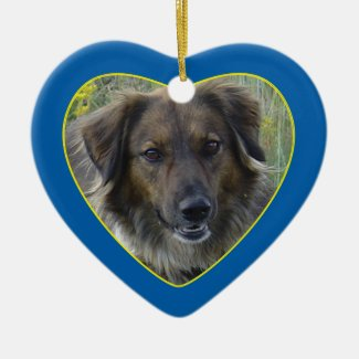 Blue Hearts Pet Memorial Photo Template