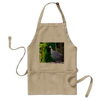 Blue Helmeted Guinea Fowl standing in the sun Adult Apron