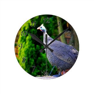 Blue Helmeted Guinea Fowl standing in the sun Round Clock