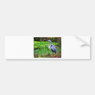 Blue Heron Bumper Sticker