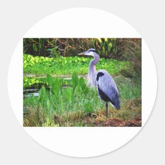 Blue Heron Classic Round Sticker