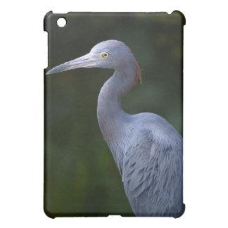 Blue Heron~ Florida Water Bird iPad Mini Cover