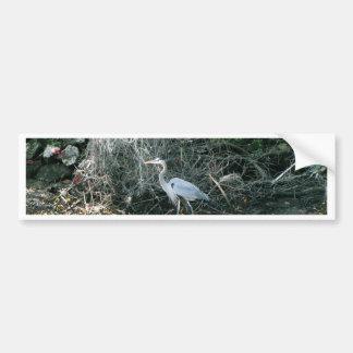 Blue Heron in Florida Bumper Sticker