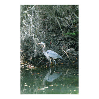 Blue Heron in Florida Stationery