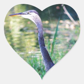 Blue Heron In Pond Heart Sticker