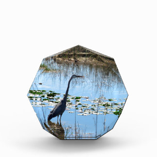 Blue Heron in the Glades Acrylic Award