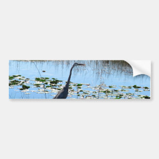 Blue Heron in the Glades Bumper Sticker