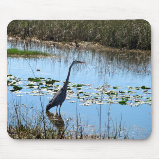 Blue Heron in the Glades Mouse Pad