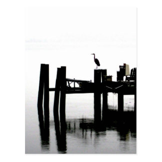 Blue Heron on a Gray Day Postcard