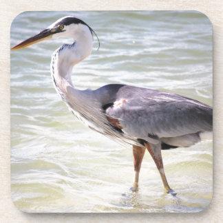 Blue Heron on Lovers Key Coasters