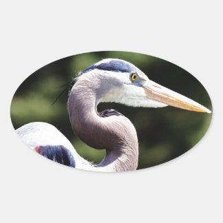 Blue Heron Oval Sticker