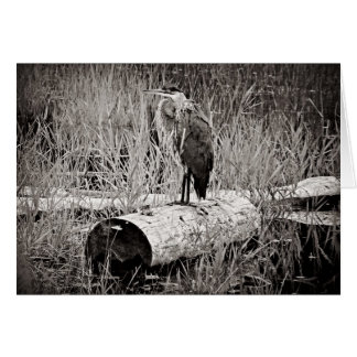 Blue Heron Photograph - Black and White Card