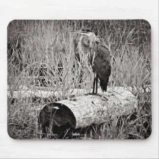 Blue Heron Photograph - Black and White Mouse Pad