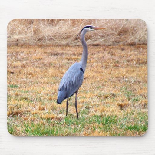 Blue Heron reflection Mouse Pads