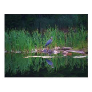 Blue Heron Reflections Animal Painting Postcard