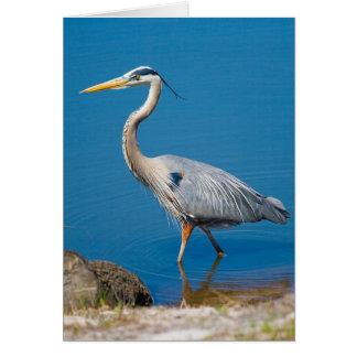 Blue Heron Wading Card