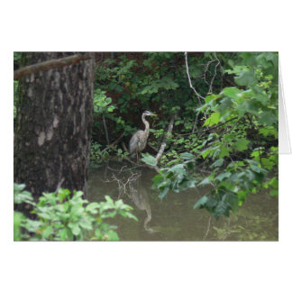 Blue Heron with Reflection on Water Card