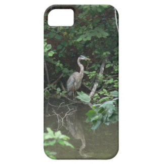 Blue Heron with Reflection on Water iPhone SE/5/5s Case
