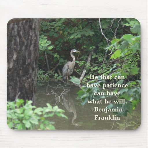 Blue Heron with Reflection on Water Mouse Pad