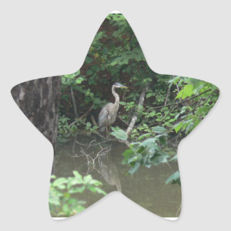 Blue Heron with Reflection on Water Star Sticker