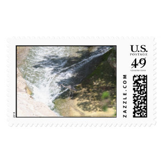 blue herring craine postage