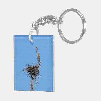 Blue Herron Nesting Keychain