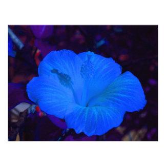 Blue hibiscus colored flower plant custom letterhead
