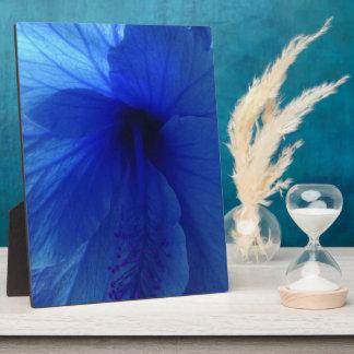 Blue Hibiscus Flower Display Plaque