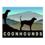 Blue Hills Coonhounds Postcard