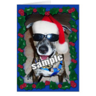 Blue Holly Frame for your Christmas Photo! Greeting Card