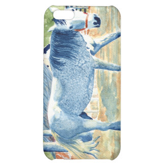 Blue Horse iPhone 5C Covers