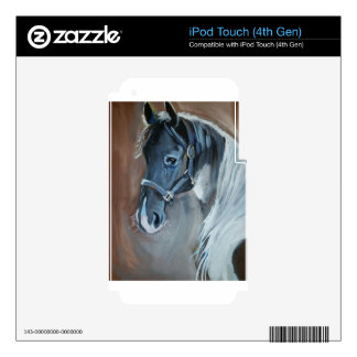 Blue Horse iPod Touch 4G Skin