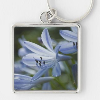 Blue Hosta Silver-Colored Square Keychain